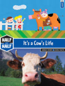 It's a Cow's Life